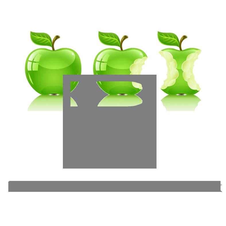 Logo NEU 2016 freigestellt grau